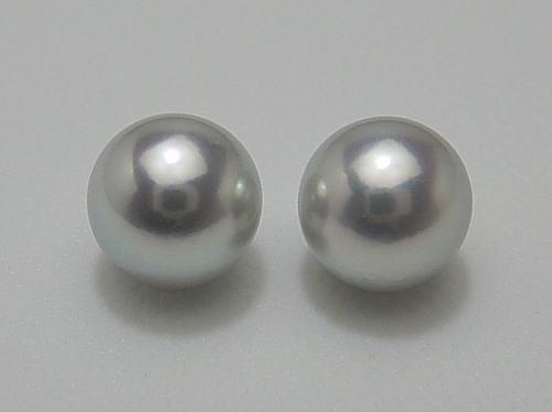 画像1: アコヤ真珠 ナチュラルブルー 8.3 mm K14WG イヤリング or ピアス