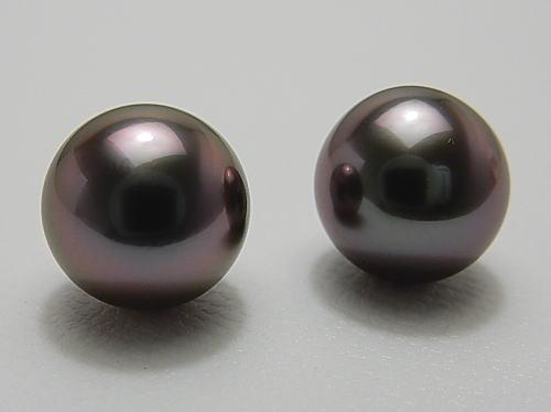 画像1: 黒蝶真珠 10.5 mm 最高品質 「ラグーン」  グレーグリーンピンク ペア珠